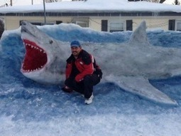 Great white snow shark has realistic look | It's Show Prep for Radio | Scoop.it