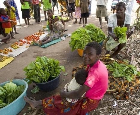 Las multinacionales amenazan la soberanía alimentaria en África - GuinGuinBali.com | Relieve | Scoop.it