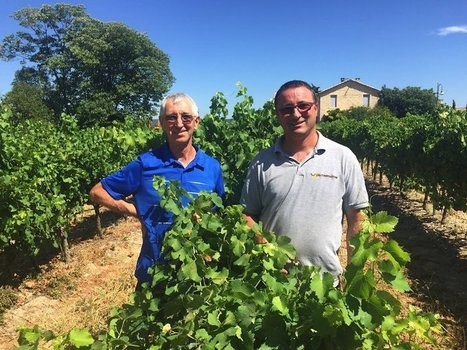 Why French Winemakers Are Seeing The World Through Rosé-Colored Glasses | All news from France | Scoop.it
