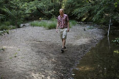 State imposes well water cuts on users near Russian River - San Francisco Chronicle (subscription) | Fish Habitat | Scoop.it