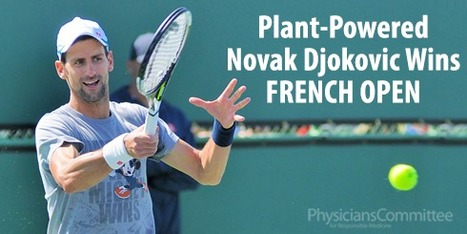 Plant-Powered Novak Djokovic Wins French Open | Vertical Farm - Food Factory | Scoop.it