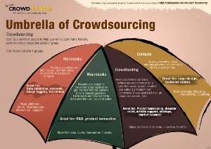 Congressional Hearing on Crowdsourcing   Conciencia Colectiva   Scoop.it