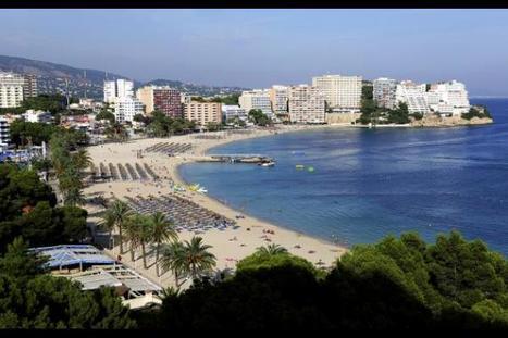 Alerte à la méduse sur les plages de Majorque | Voyages | Eurotel Group | Scoop.it