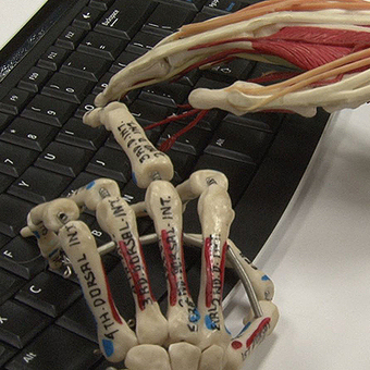 NIU researcher: Prolonged tablet typing may lead to shoulder problems | NIU Today | osha safety training | Scoop.it