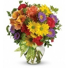 A summery mix of yellow daisy chrysanthemums, purple asters and red and orange carnations - arranged in a clear ginger vase and adorned with a cheerful green plaid bow - will make their wishes come... | toronto flowers | Scoop.it