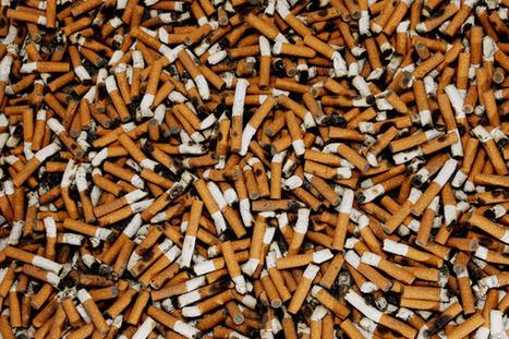 El carbungo, el agente tóxico y cancerígeno más mortífero | Periodismo Ecológico Ambiental | Scoop.it