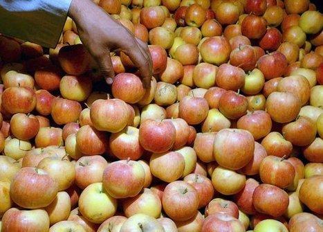 Mucha fruta y un peso equilibrado, las claves para vivir más y mejor | Seguridad Alimentaria - YoComproSano | Scoop.it