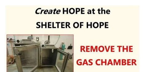 Petition: Stop Use and Remove the Gas Chamber at the Shelter of Hope in Cobourg, ON | Saving STRAYS, PETS and SHELTER ANIMALS~ | Scoop.it