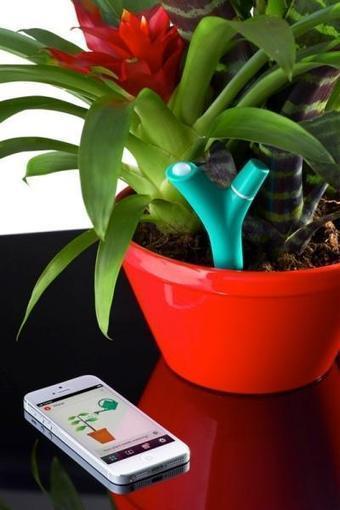 Parrot Flower Power, un gadget con vocación de jardinero | Ads - Media | Scoop.it