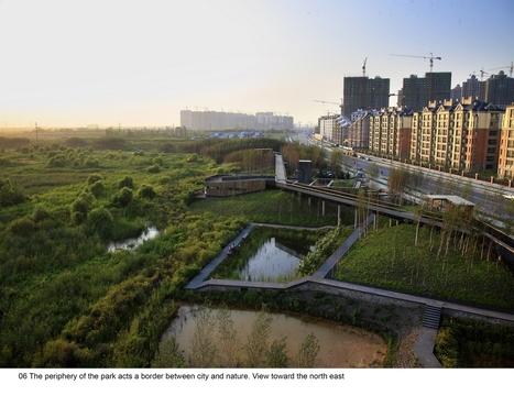 The Transformed Stormwater Park – Qunli National Urban Wetland / Turenscape   Designalmic   Designalmic   Scoop.it