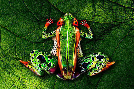 Amazing Nature Inspired Body Art Illusions by Johannes Stoetter | The brain and illusions | Scoop.it