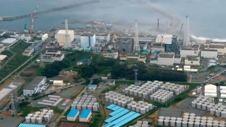 Physicist: There was no Fukushima nuclear disaster | True Inventions, Environment, Suppressed Technologies and improvements. | Scoop.it