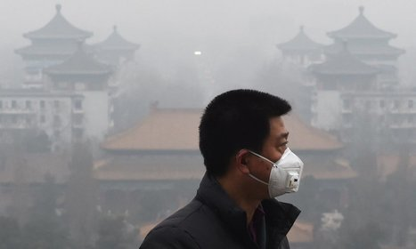 Air pollution now major contributor to stroke, global study finds | Science | The Guardian | GarryRogers Biosphere News | Scoop.it