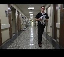 'Clarence Nightingale': More men finding careers in nursing | Nursing | Scoop.it