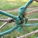 The Tug-of-War of Relationships | Psychotherapy & Counselling | Scoop.it