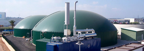 Biogas, Solution To Nigeria's Energy Problems? | Renewable Energy Africa | Scoop.it