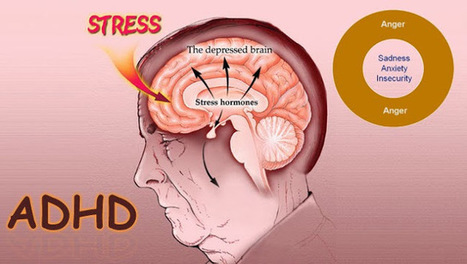 Get A Clear View Of The Subtypes Of ADHD With Finest PPT Templates   ADHD   Scoop.it