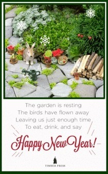 One Giant Step for Miniature Gardening   Annie Haven   Haven Brand   Scoop.it