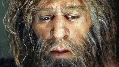 Modern humans are still carrying Neanderthal viruses | Strange days indeed... | Scoop.it