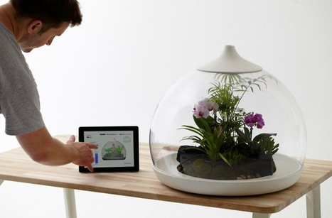 Climate-controlled Terrarium is controlled by iPad   How We Teach and How We Learn   Scoop.it