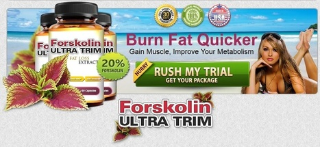 Forskolin for Weight Loss | Personal Scoop | Scoop.it