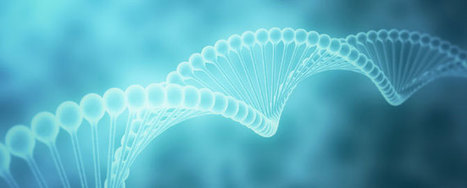 Smoking leaves historical 'footprint' in DNA | DNA and RNA Research | Scoop.it