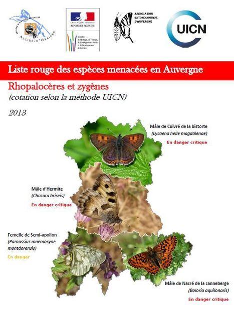 La liste rouge régionale des papillons diurnes pour l'Auvergne - DREAL Auvergne-Rhône-Alpes | Insect Archive | Scoop.it