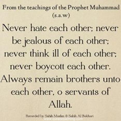 Quran coaching   Quran Online   Scoop.it