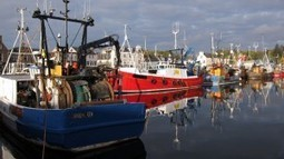 Controlling our future: Scottish fishing and the need for independence | Scotland Matters | Scoop.it