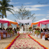 Food Catering Wedding Menus