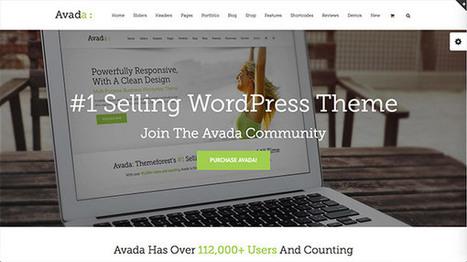 Web Designs of the Best Selling WordPress Themes   Web design   Scoop.it