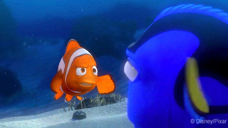 Can you surf the East Australian Current, Finding Nemo-style? | Geography in the classroom | Scoop.it