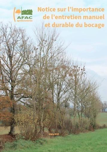 Notice sur l'importance de la gestion manuelle et durable du bocage | agroforesterie, agroecologie | Scoop.it