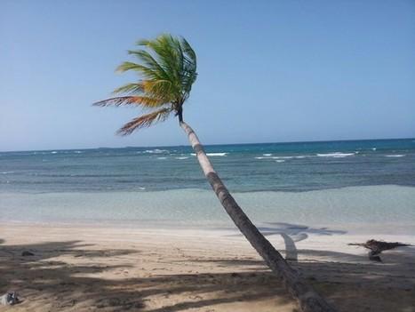 FIND US ON FACEBOOK NOW   real estate SPAIN -  DUBAI, TUNISIA, MAROCCO   Scoop.it