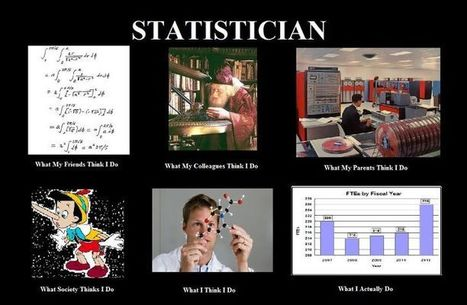 Statisticians | What I really do | Scoop.it