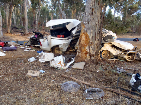 A new approach to cut death toll of young people in road accidents | 7-10 PDHPE | Scoop.it