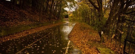 6 Fall Driving Tips to Keep You Safe this Season – Kane & Silverman   Accidents, Recalls and Awareness   Scoop.it