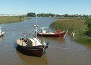 Uruguay / Alertan sobre contaminación en río Santa Lucía | MOVUS | Scoop.it