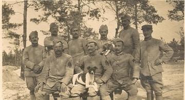 Grande Guerre : racontez-nous l'histoire de vos ancêtres soldats - MyHeritage.fr - Blog francophone   Poilus de Valence   Scoop.it