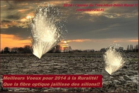 (Très) Haut Débit et Ruralité ....: Voeux 2014: Labourages et Fibrages ?! | Collectivités territoriales | Scoop.it