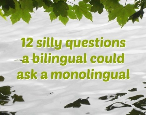 12 silly questions a bilingual could ask a monolingual | Angelika's German Magazine | Scoop.it