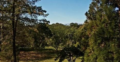 Jardín Francisco Javier Clavijero, 36 años en educación ambiental - e-consulta Veracruz | Educación Ambiental | Scoop.it