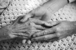 """Where's the Aged Care Sector's """"Road Map""""? 