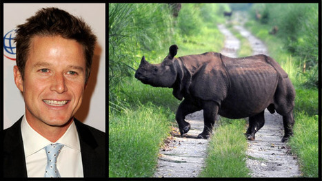 Nat Geo Wild Sends Billy Bush to Nepal for New Special (Exclusive) - Hollywood Reporter | Rhino Poaching South Africa  & Accross the Globe | Scoop.it