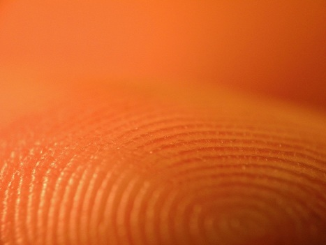 Fingerprint recognition could replace smartphone passwords | phoneunlock247 | Scoop.it