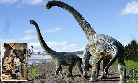New species of dinosaur is discovered in Queensland | Dinosaurs Down Under | Scoop.it