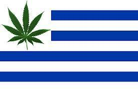 Uruguai perto de fazer história | Legalize Jah | Scoop.it