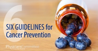 Nutritional Guidelines for Cancer Prevention. | Cancer - Advances, Knowledge, Integrative & Holistic Treatments | Scoop.it
