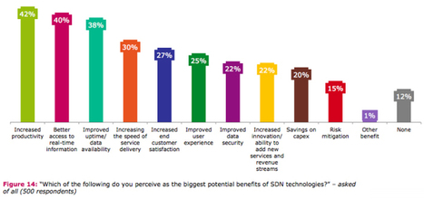 Survey shows 1 in 5 enterprises use software-defined networks | Software Development Services | Scoop.it
