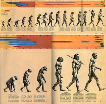 """Windows on Evolution – can you outdo """"March of Progress"""" imagery? 